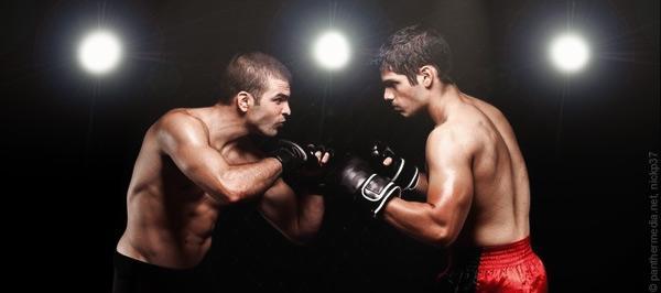 Boxer im Kampf